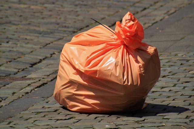 В Ленобласти появилась услуга по индивидуальному вывозу мусора