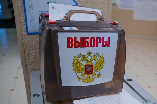Дочь Макарова зарегистрировали в качестве кандидата в депутаты в ЗакС