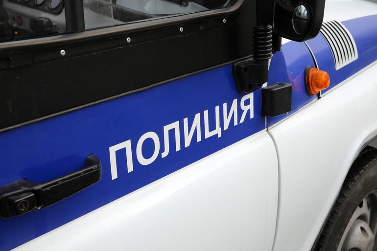 Полиция задержала подозреваемого в приставании к девочке в метро Петербурга