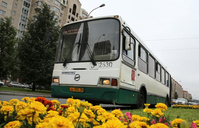 В Петербурге возвращают «школьные» автобусные маршруты