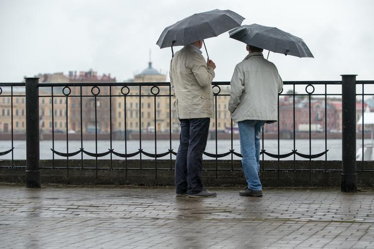 МЧС предупредило петербуржцев об усилении ветра до 15 м/с в воскресенье