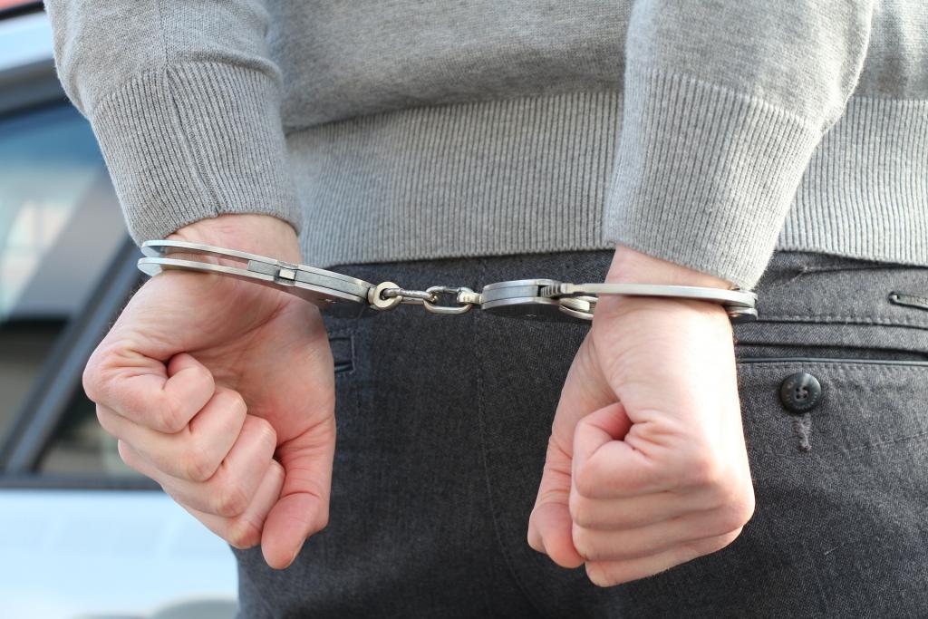 В Сестрорецке 22-летний молодой человек склонил к сексу школьницу