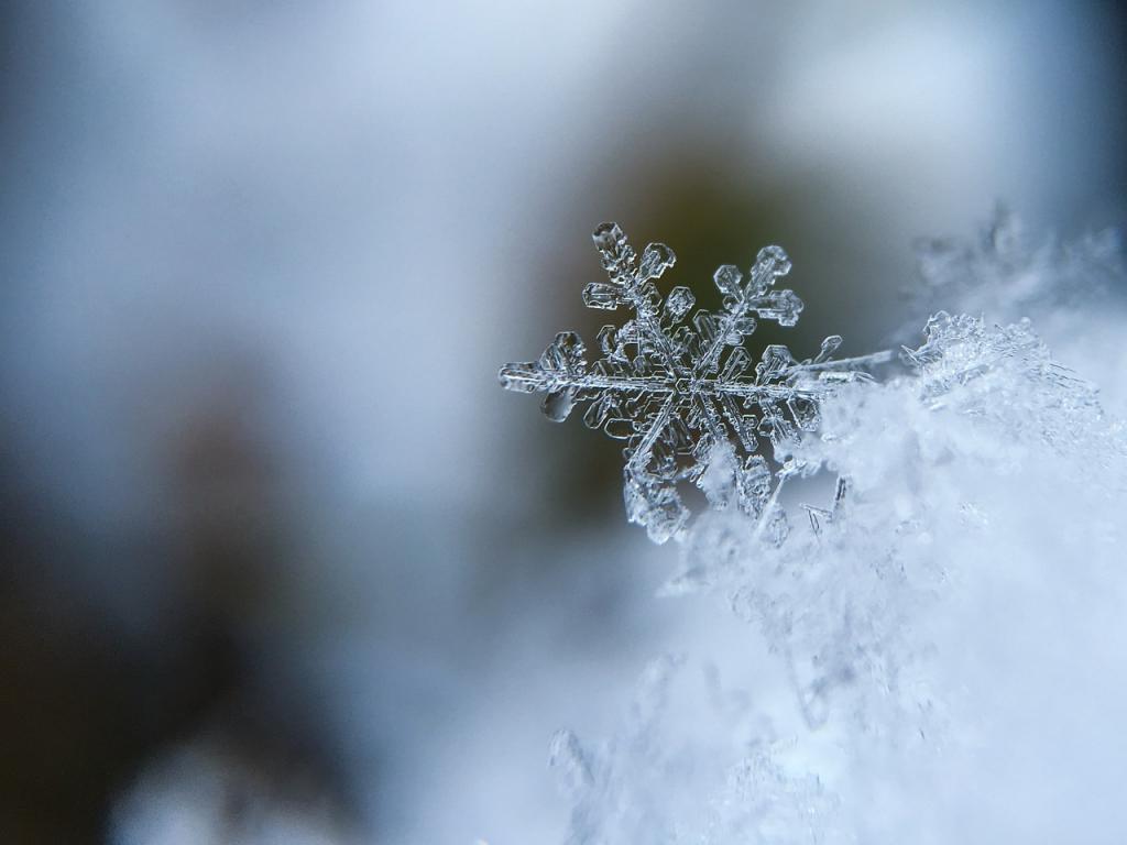 МЧС предупреждает петербуржцев о похолодании до -20 градусов
