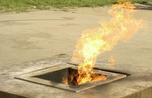 Петербурженка сожгла розу в Вечном огне после ссоры с молодым человеком