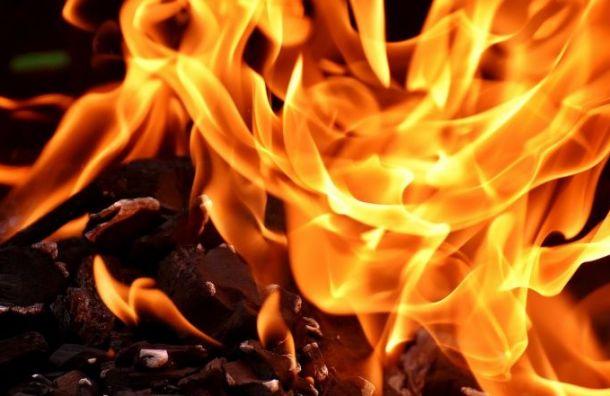 При пожаре в Боткинской больнице погиб человек