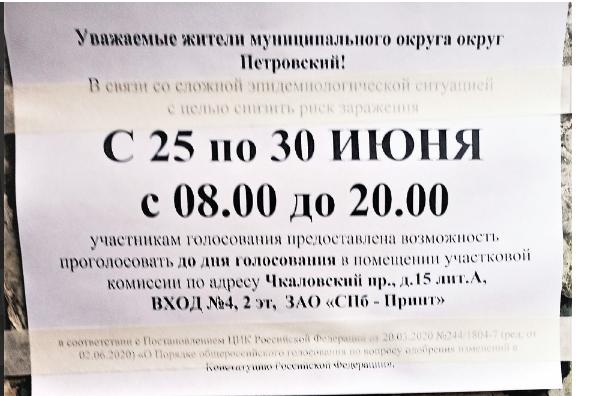 Горизбирком: 79,16% петербургских избирателей сказали да поправкам