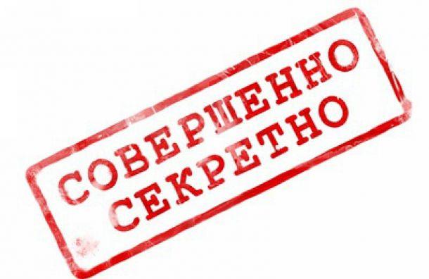 Жителя Петербурга судили за передачу секретных данных немцам