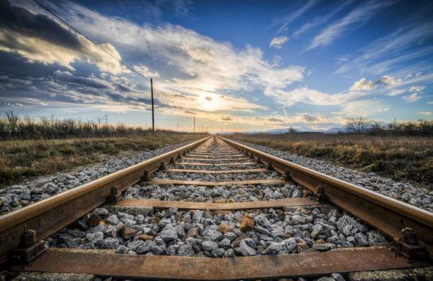 Во Всеволожском районе 4-летний ребенок погиб под колесами поезда