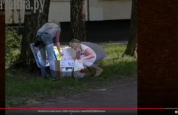 Петербуржцы заподозрили УИК 505 во вбросах бюллетеней