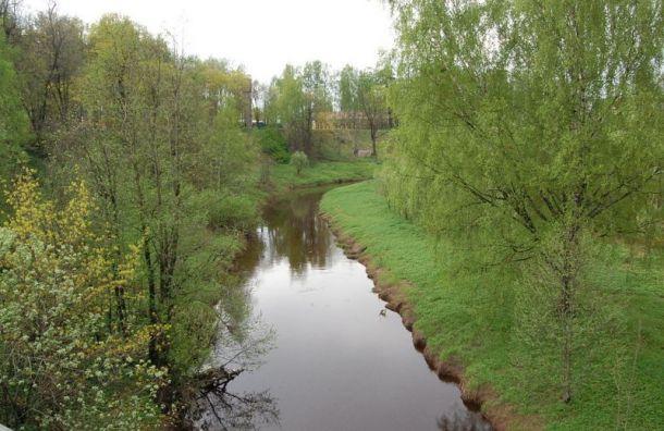Коммунальщиков Ленобласти оштрафовали за грязные стоки в реку Охта