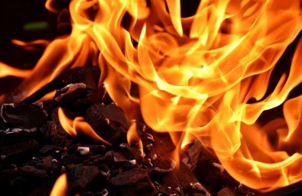 Спасатели потушили пожар в автосервисе в Петроградском районе