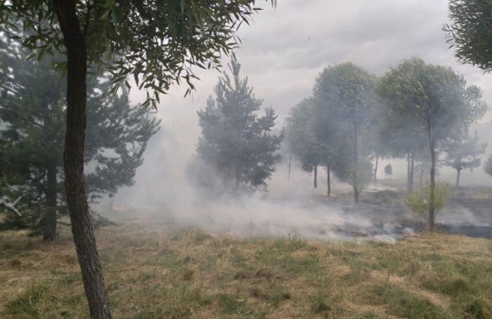 В Полежаевском парке произошёл пожар
