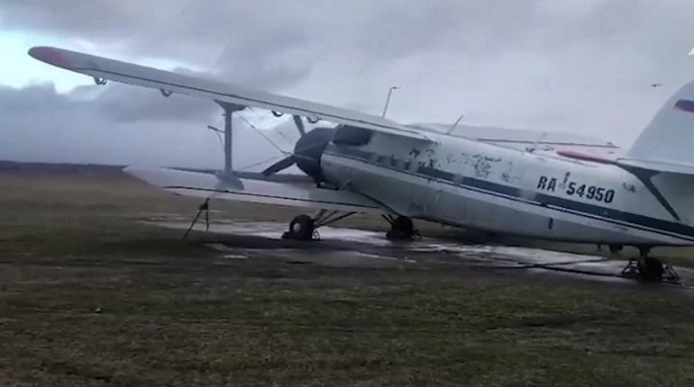 Следователи проверят аэроклуб Ленобласти после неудачного прыжка парашютиста