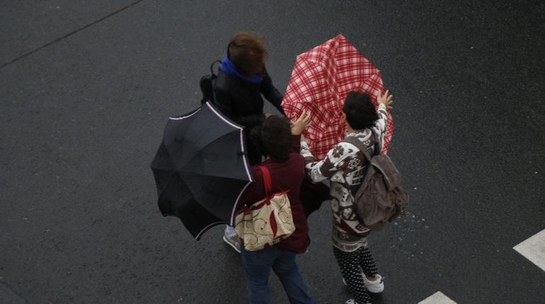 В Петербурге синоптики прогнозируют +7 градусов, к вечеру — дождь