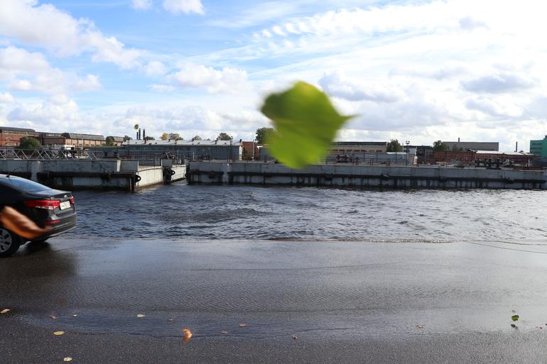 К вечеру в Петербурге поднимется сильный ветер