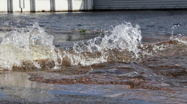 МЧС предупредило петербуржцев о ветре и высоких волнах