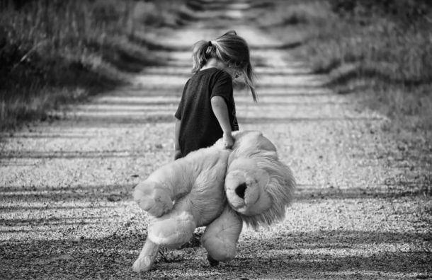 Мигрант домогался шестилетней девочки в Тосненском районе
