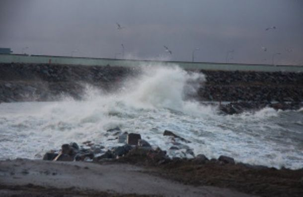 Санкт-Петербург готовится к возможному наводнению
