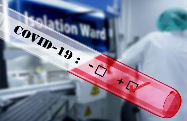Число заболевших коронавирусом в России выросло до 93-х человек