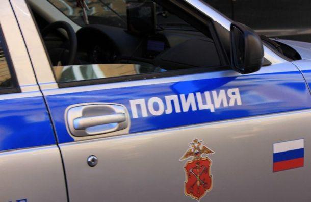 Коротышка ударил ножом двух мужчин в парке Александрино