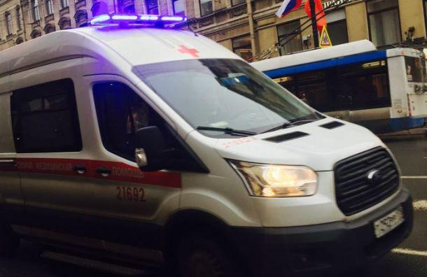 Водитель Volvo погиб в ДТП с грузовиком на «Скандинавии»