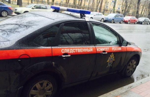 Фигуранты списка «Пилы» обратились в СК после убийства Григорьевой