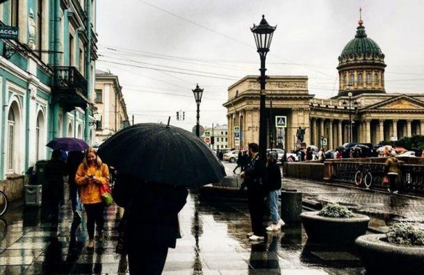 Рабочая неделя в Санкт-Петербурге началась с дождя и плюсовой температуры
