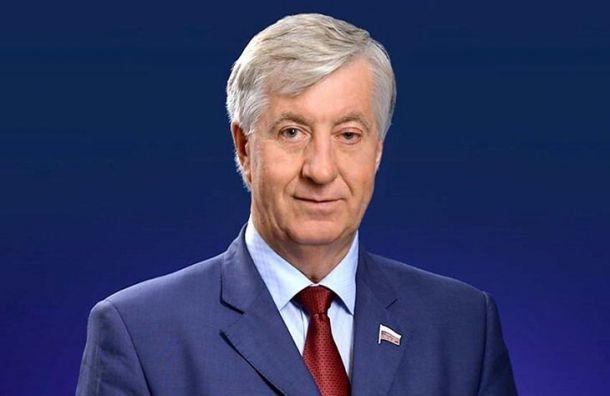 Удостоверение депутата Госдумы пропало в Санкт-Петербурге