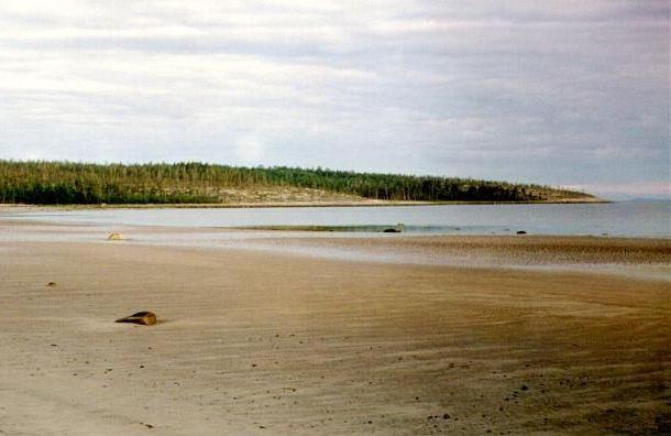 Туристы из Санкт-Петербурга пропали в Белом море