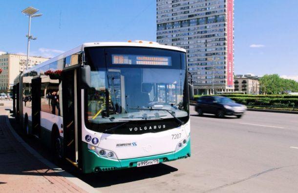 Смольный опубликовал карту всех маршрутов общественного транспорта