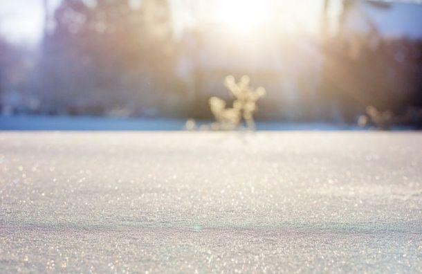 Житель Петербурга погиб после катания на лыжах в Ленобласти