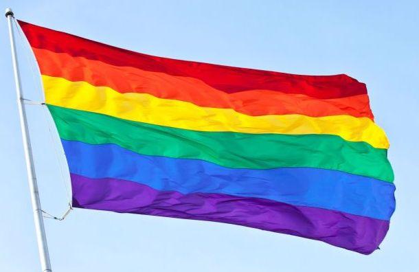 ЛГБТ-активистов задержали во время пикетов на Дворцовой
