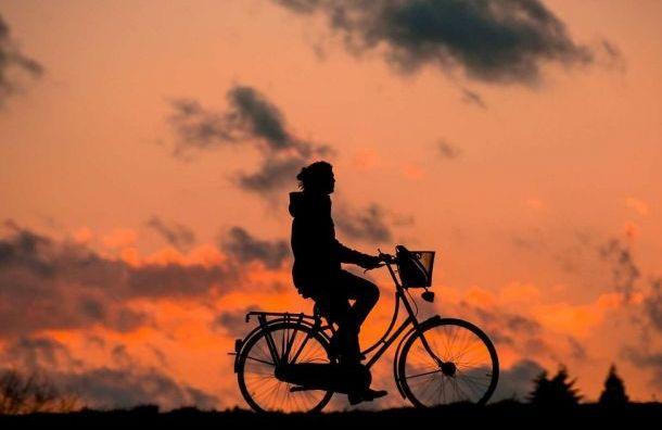 Стало известно, где появятся новые велодорожки