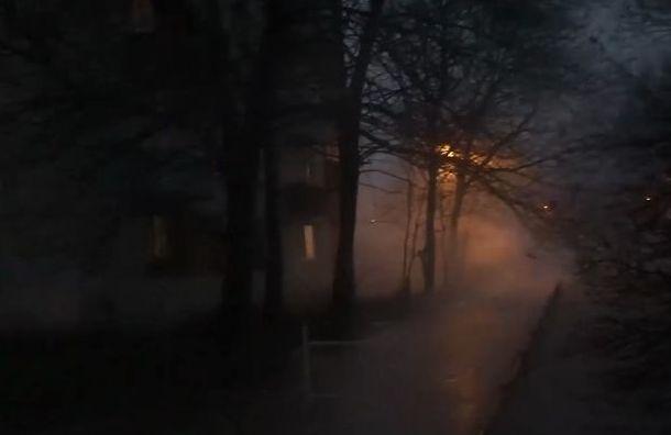Полюстровский проспект заволокло паром после коммунальной аварии