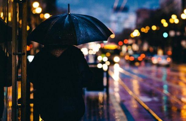 Рабочая неделя в Санкт-Петербурге начнется с дождей и гроз