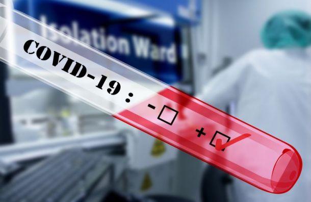 За сутки в Санкт-Петербурге выявили 35 случаев заражения коронавирусом
