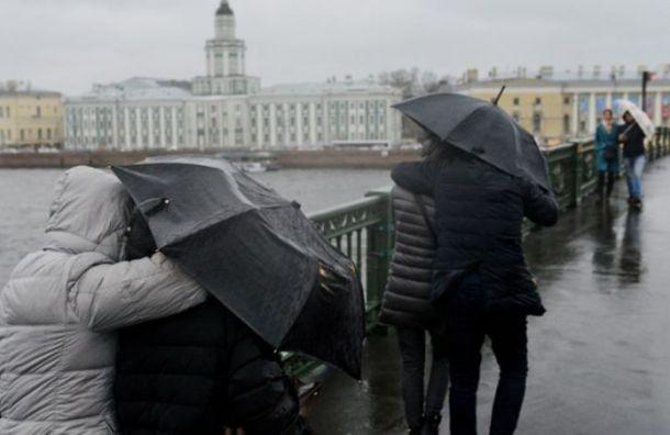 Колесов опроверг выпадение снега в Санкт-Петербурге