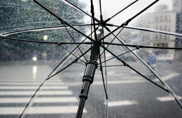 Кратковременные дожди обещают петербуржцам в понедельник