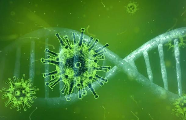 Вирусолог Щелканов: Летом активность коронавируса снизится