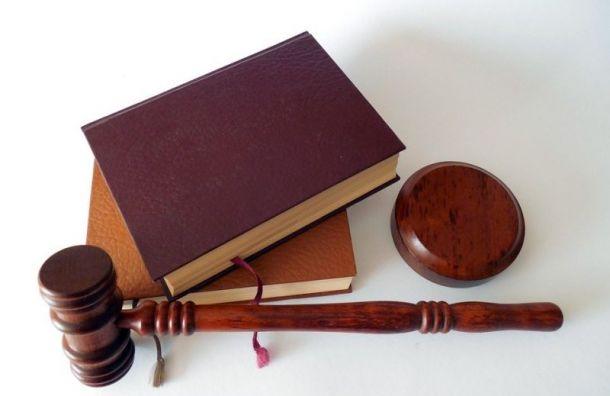 Обвиняемых в изнасиловании и убийстве могут посадить на 8 и 18 лет