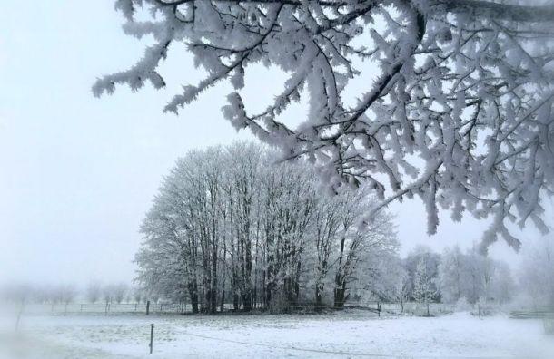 Ноябрь начнётся с мокрого снега и гололёда