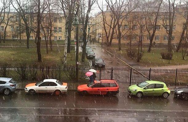 На Санкт-Петербург обрушились сильный ветер и дождь