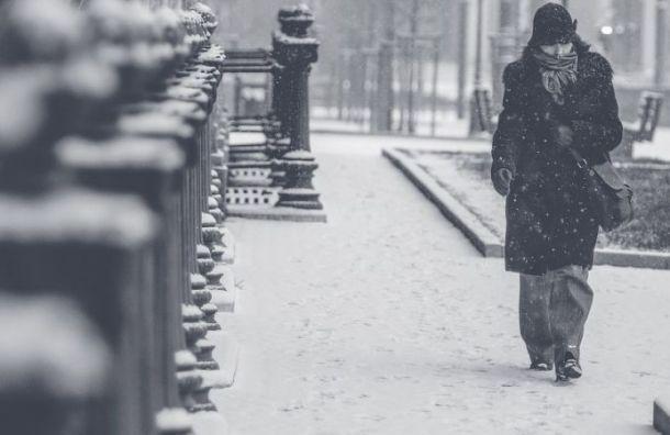 Санкт-Петербург в пятницу ждет снег и похолодание