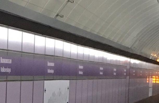 Движение поездов фиолетовой ветки метро приостанавливали на час