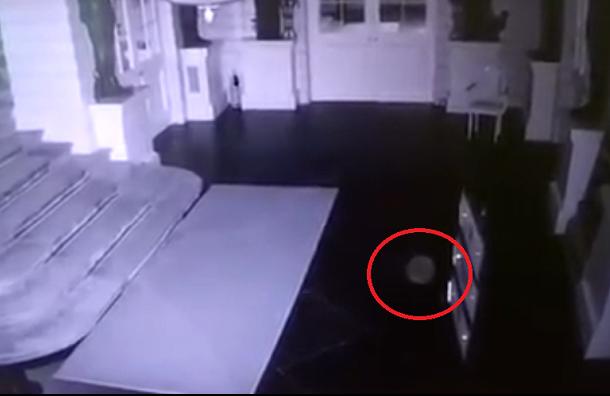 Камеры в Павловском дворце засняли аномальное явление