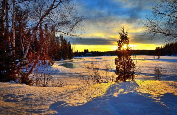 В воскресенье в Санкт-Петербурге снова потеплеет