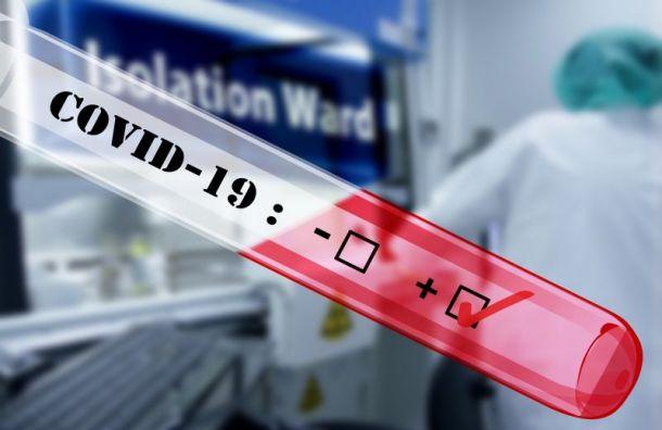 За сутки выявили 22 новых случая заражения коронавирусом в Санкт-Петербурге