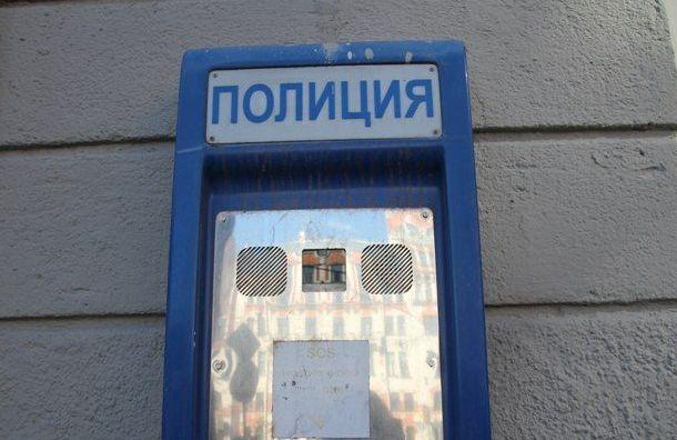 Артиста Театра музкомедии избили и обчистили в Веселом Поселке