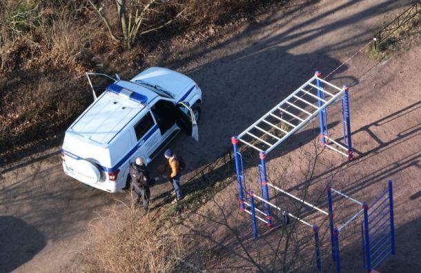 Петербуржца оштрафовали за побег от полицейских