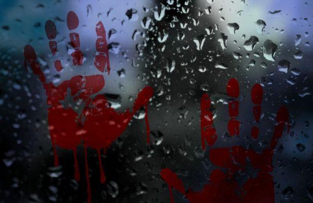 В Санкт-Петербурге разыскивают каршеринговый автомобиль с окровавленным телом внутри